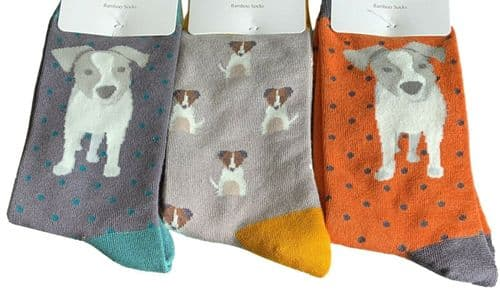 Jack Russell Socks Mens 3 Pair Pack Novelty Sock Bamboo Cotton Dog Orange Grey
